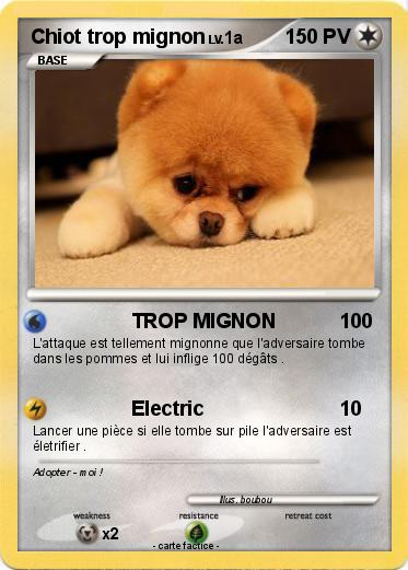 Pok mon chiot trop mignon 2 2 trop mignon ma carte pok mon - Photo de chiot a imprimer ...