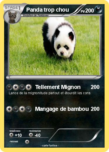 Pokemon Panda Trop Chou 1