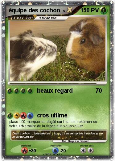 Pok mon equipe des cochon beaux regard ma carte pok mon - Cochon pokemon ...