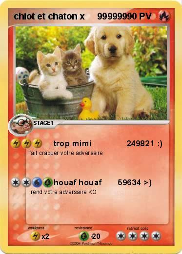 Pok mon chiot et chaton x 999999 999999 trop mimi 249821 ma carte pok mon - Photo de chiot a imprimer ...