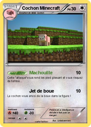 Pok mon cochon minecraft 3 3 machouille ma carte pok mon - Cochon pokemon ...