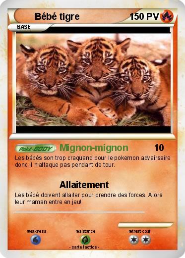 Pok mon bebe tigre 22 22 mignon mignon ma carte pok mon - Bebe tigre mignon ...