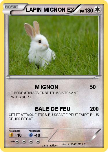 Pok mon lapin ex 1 1 m ignon ma carte pok mon - Photo de lapin mignon ...