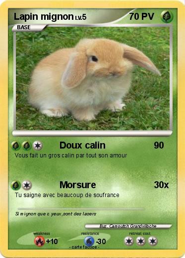 Pok mon lapin mignon doux calin ma carte pok mon - Photo de lapin mignon ...