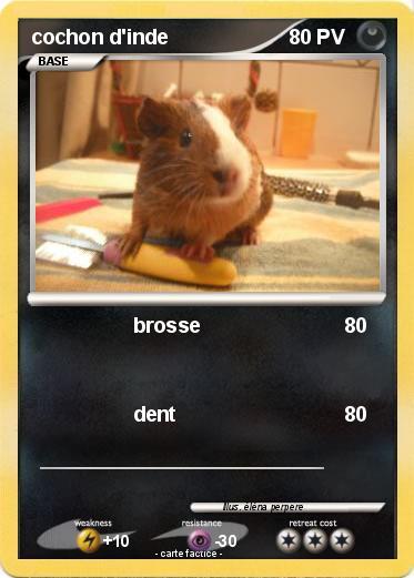 Pok mon cochon d inde 25 25 brosse ma carte pok mon - Cochon pokemon ...