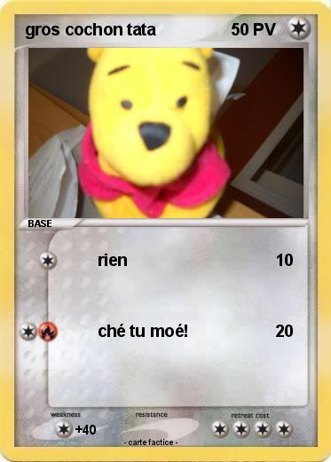 Pok mon gros cochon tata rien ma carte pok mon - Cochon pokemon ...