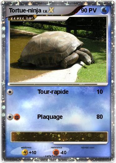 Pok mon tortue ninja 19 19 tour rapide ma carte pok mon - Tortu ninja nom ...