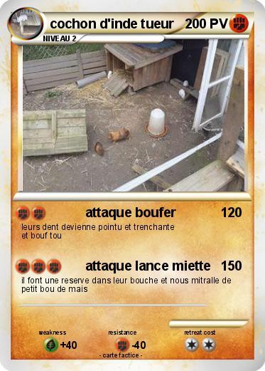 Pok mon cochon d inde tueur attaque boufer ma carte - Cochon pokemon ...