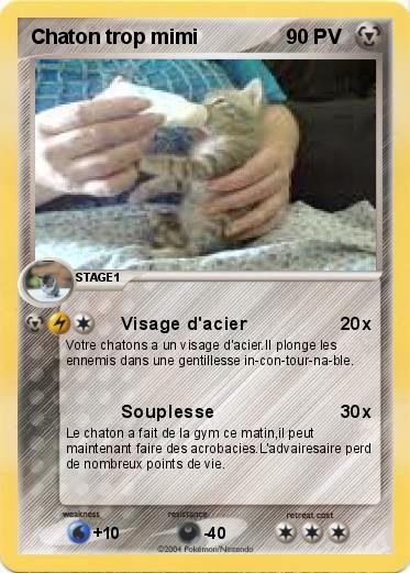Pok mon chaton trop mimi visage d 39 acier ma carte pok mon - Image de chaton trop mimi ...