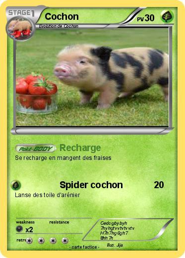 Pok mon cochon 322 322 recharge ma carte pok mon - Cochon pokemon ...