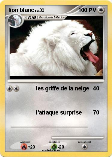 Pokemon Lion Blanc 13
