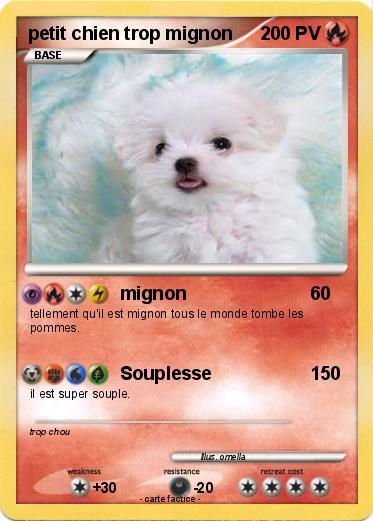 Pokemon Petit Chien Trop Mignon