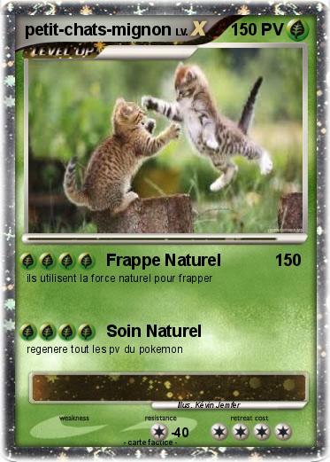 Pok mon petit chats mignon frappe naturel ma carte pok mon - Chat tout mignon ...