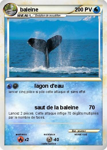 Pok mon baleine 82 82 lagon d 39 eau ma carte pok mon - Pokemon baleine ...