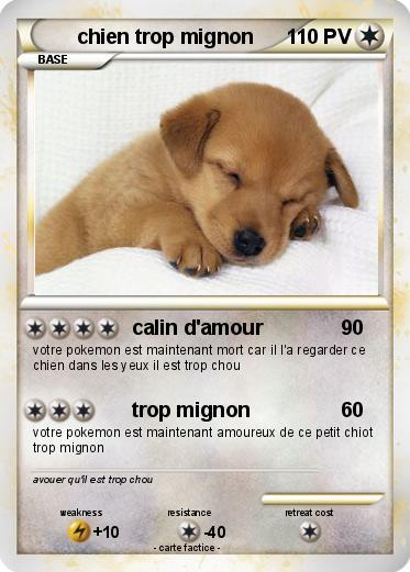 Pok mon chien trop mignon 10 10 calin d 39 amour ma carte pok mon - Coloriage de chiot trop mignon ...