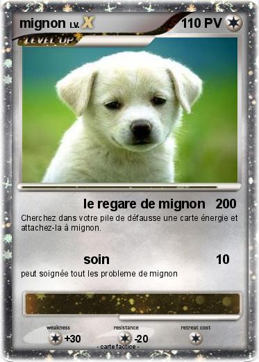 Pokemon Mignon 69