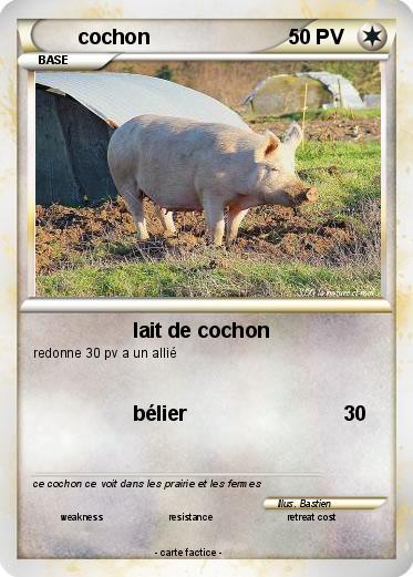 Pok mon cochon 130 130 lait de cochon ma carte pok mon - Cochon pokemon ...