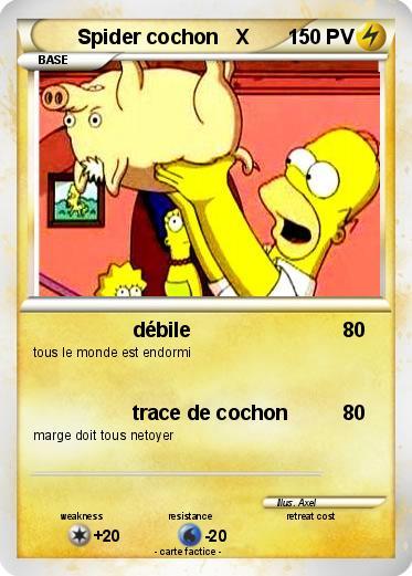 Pok mon spider cochon x d bile ma carte pok mon - Cochon pokemon ...