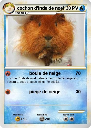 Pok mon cochon d inde de noel boule de neige ma carte - Cochon pokemon ...