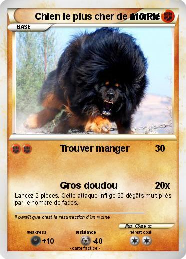 pok mon chien le plus cher de monde trouver manger ma carte pok mon. Black Bedroom Furniture Sets. Home Design Ideas