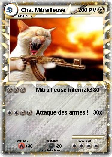 Les chats ! MvZudEhRPhEg