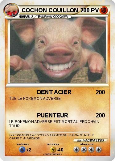 Pok mon cochon couillon dent acier ma carte pok mon - Cochon pokemon ...