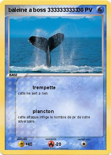 Pok mon baleine a boss 3333333333 3333333333 trempette - Pokemon baleine ...