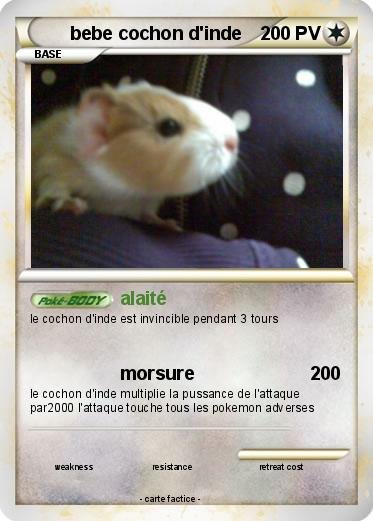 Pok mon bebe cochon d inde 1 1 alait ma carte pok mon - Cochon pokemon ...