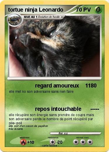 Pok mon tortue ninja leonardo 1 1 regard amoureux 11 ma carte pok mon - Leonardo tortues ninja ...