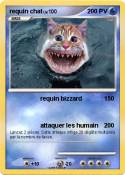 requin chat