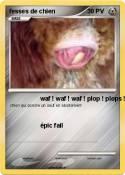 fesses de chien