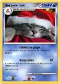 chat pere noel