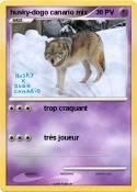 husky-dogo
