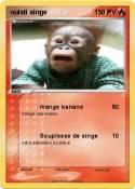 ouisti singe