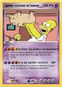 spider cochon
