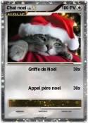 Chat noel