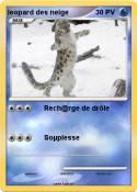 leopard des