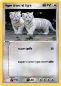 tigre blanc et