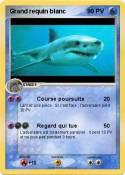 Grand requin