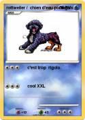 rottweiler /