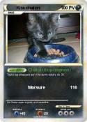 Kira chaton