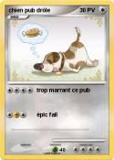 chien pub