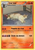 Chat fatal