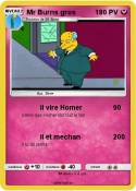 Mr Burns gros
