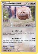 bouboule cat