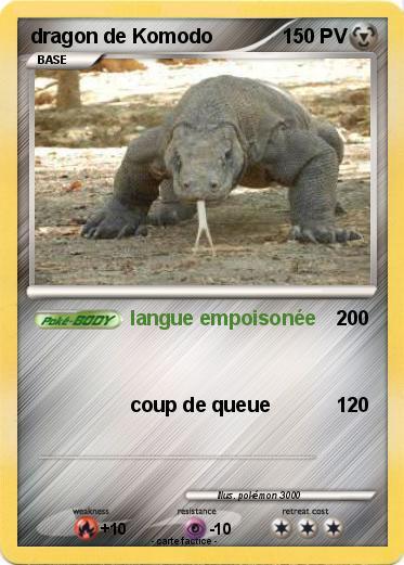 Pokemon dragon de Komodo 13