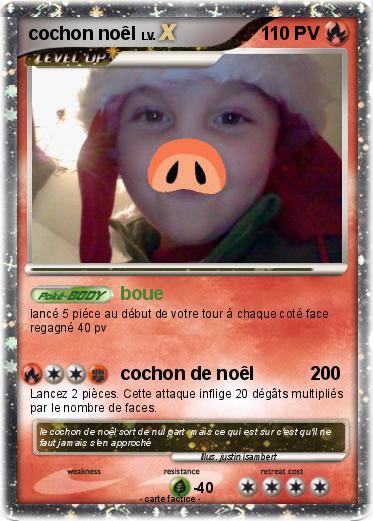 Pok mon cochon noel boue ma carte pok mon - Cochon pokemon ...