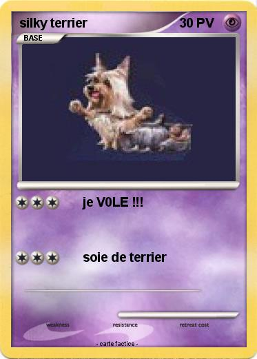 Pokemon silky terrier