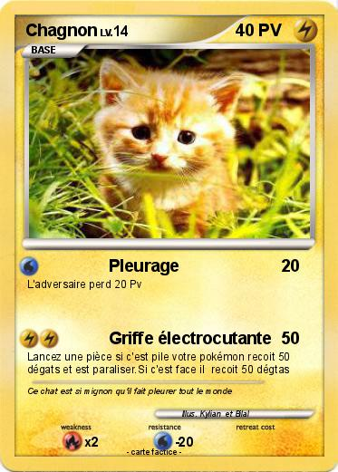 Pokemon Chagnon