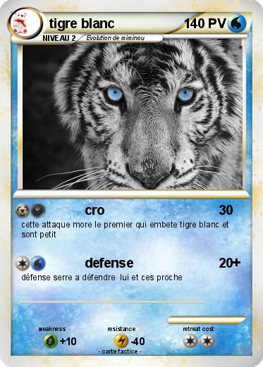 Pokemon tigre blanc
